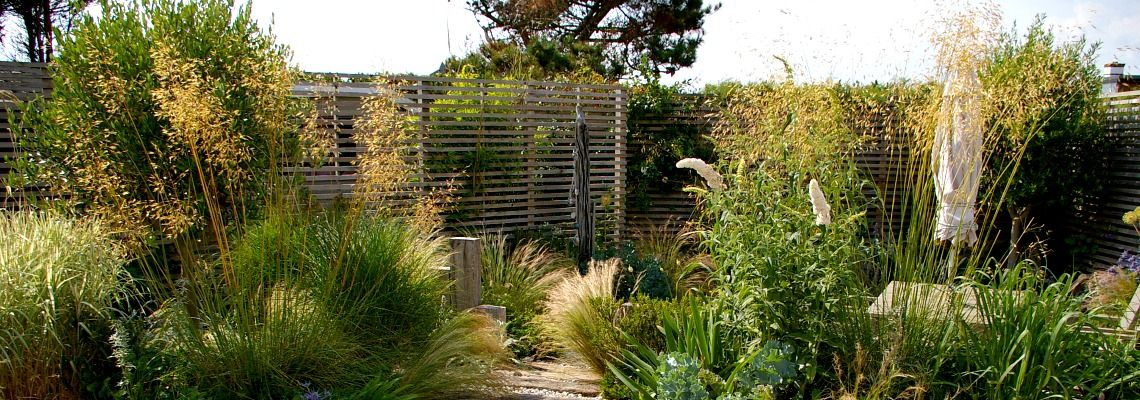 Ornamental grasses garden design