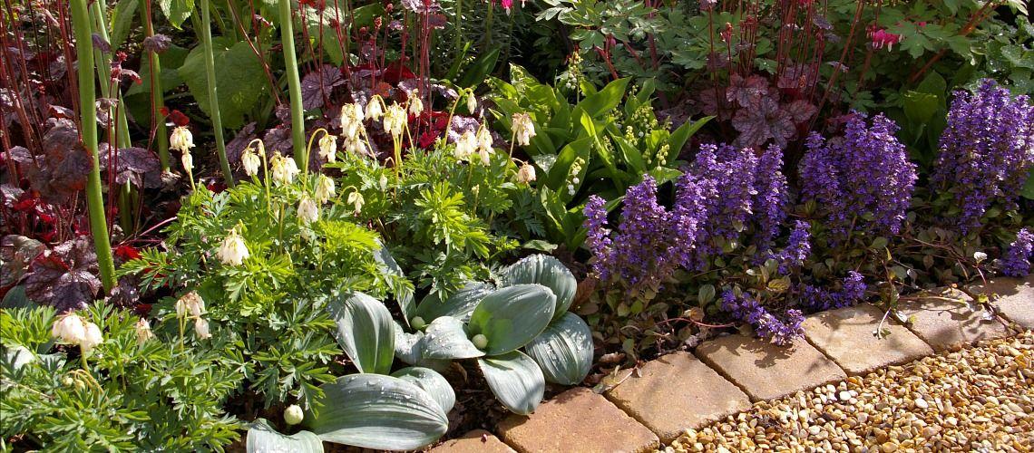Malvern Spring Show Planting Detail